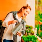 Horta em apartamento: Dicas de como fazer a manutenção